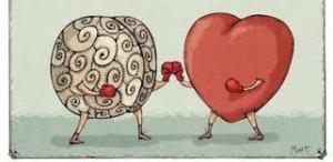 head & heart boxing